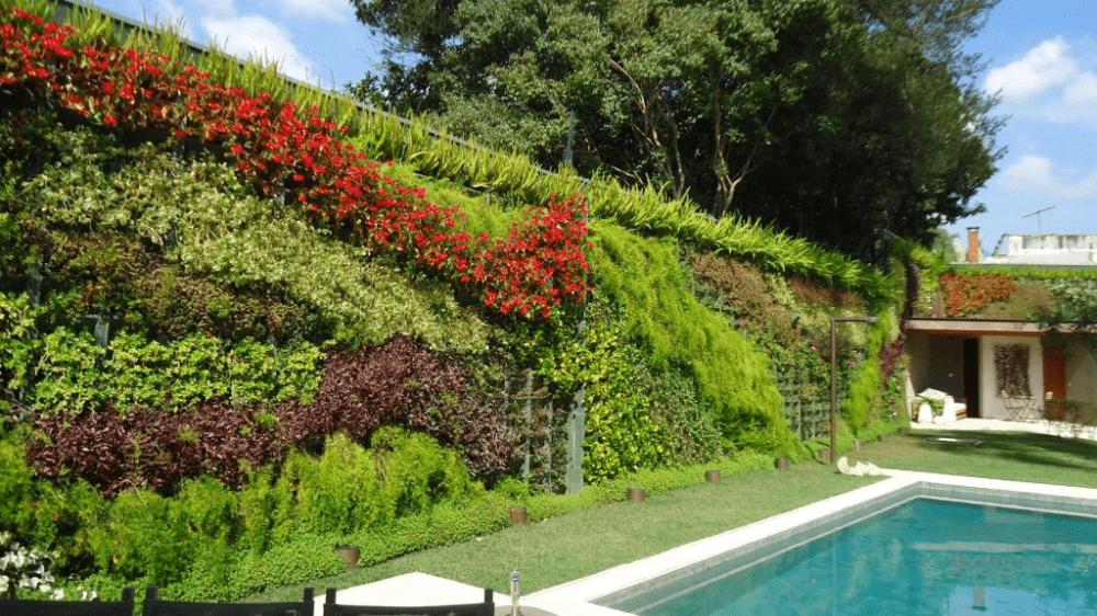 Bahçe Duvarına Dikey Bahçe Uygulaması
