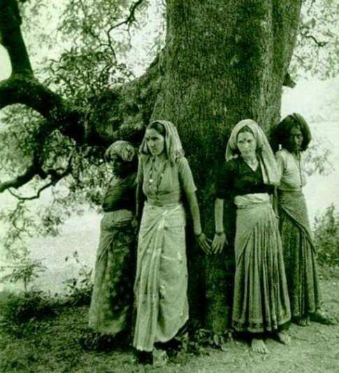 Ağaçlara sarılmak hindistanda başlamıştır