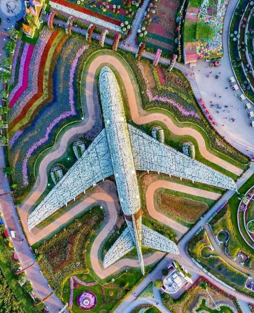 Dubai Miracle garden - mucize bahçe