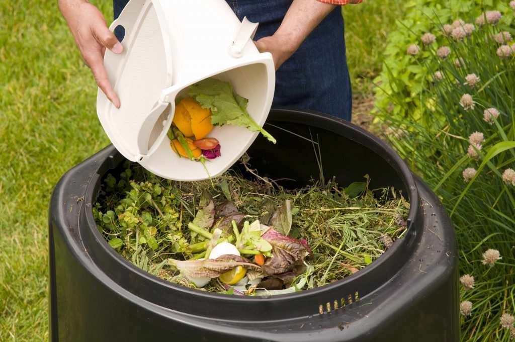 kompost gübre