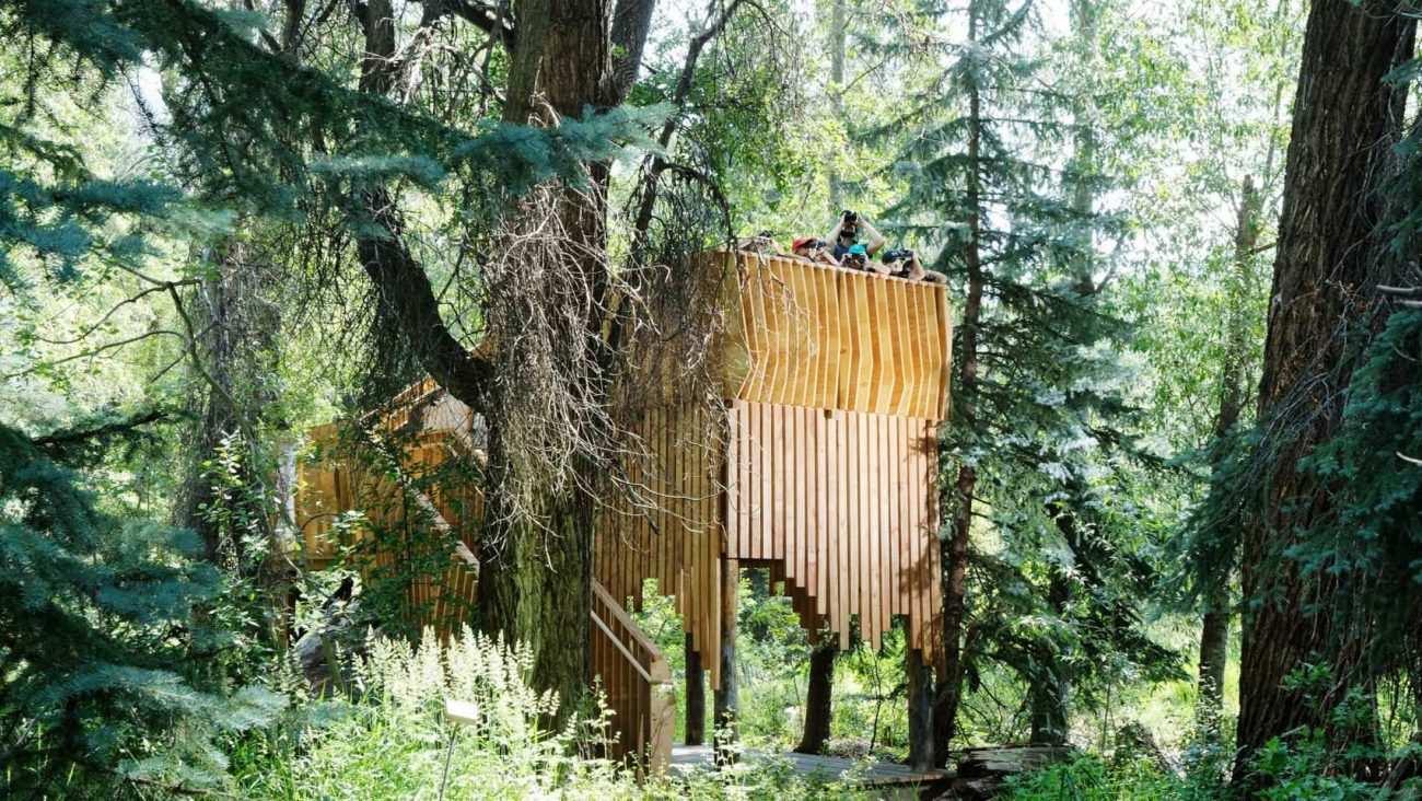 Ağaç Evler ve Dünyadan İlginç Ağaç Ev Örnekleri