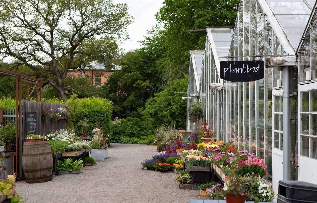 İsveçte botanik bahçe kafe sitinde, bir tohumun serüvenine tanık olabileceğiniz eğitim ve hizmet alanı.